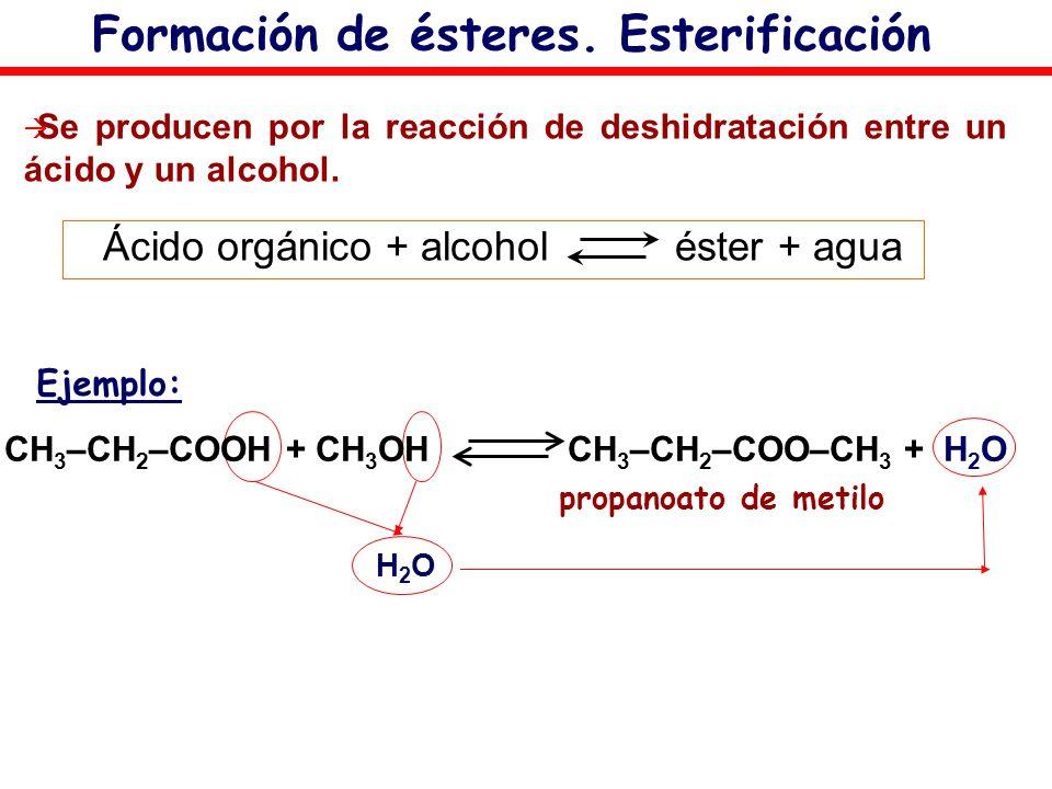 Formación de ésteres. Esterificación Se producen por la reacción de deshidratación entre un ácido y un alcohol. Ácido orgánico + alcohol éster + agua