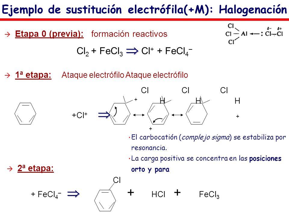 Etapa 0 (previa): formación reactivos Cl 2 + FeCl 3 Cl + + FeCl 4 – Ejemplo de sustitución electrófila(+M): Halogenación 1ª etapa: Ataque electrófilo