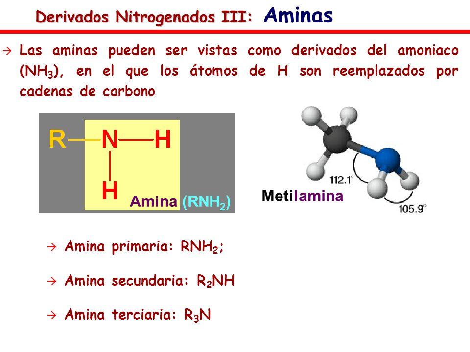 Derivados Nitrogenados III: Derivados Nitrogenados III: Aminas Las aminas pueden ser vistas como derivados del amoniaco (NH 3 ), en el que los átomos