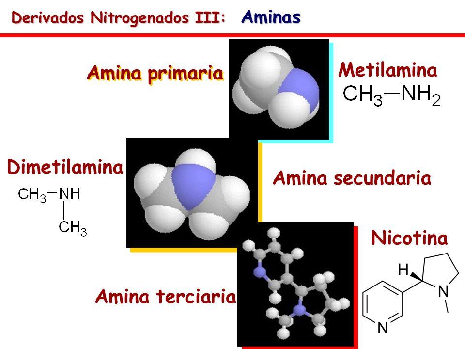 Amina primaria Metilamina Amina secundaria Dimetilamina Amina terciaria Nicotina Derivados Nitrogenados III: Aminas