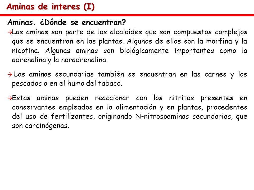 Aminas de interes (I) Aminas. ¿Dónde se encuentran? Las aminas son parte de los alcaloides que son compuestos complejos que se encuentran en las plant