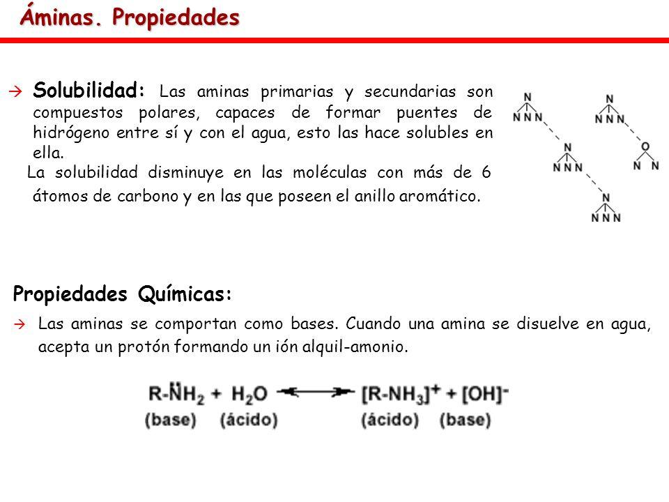 Áminas. Propiedades Propiedades Químicas: Las aminas se comportan como bases. Cuando una amina se disuelve en agua, acepta un protón formando un ión a