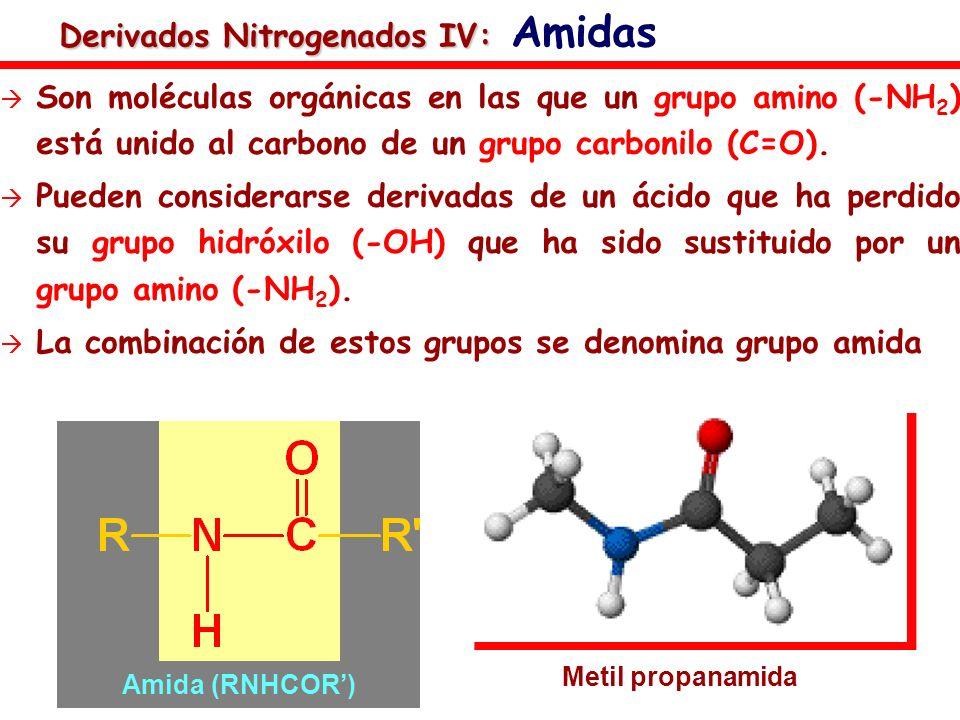 Derivados Nitrogenados IV: Derivados Nitrogenados IV: Amidas Son moléculas orgánicas en las que un grupo amino (-NH 2 ) está unido al carbono de un gr