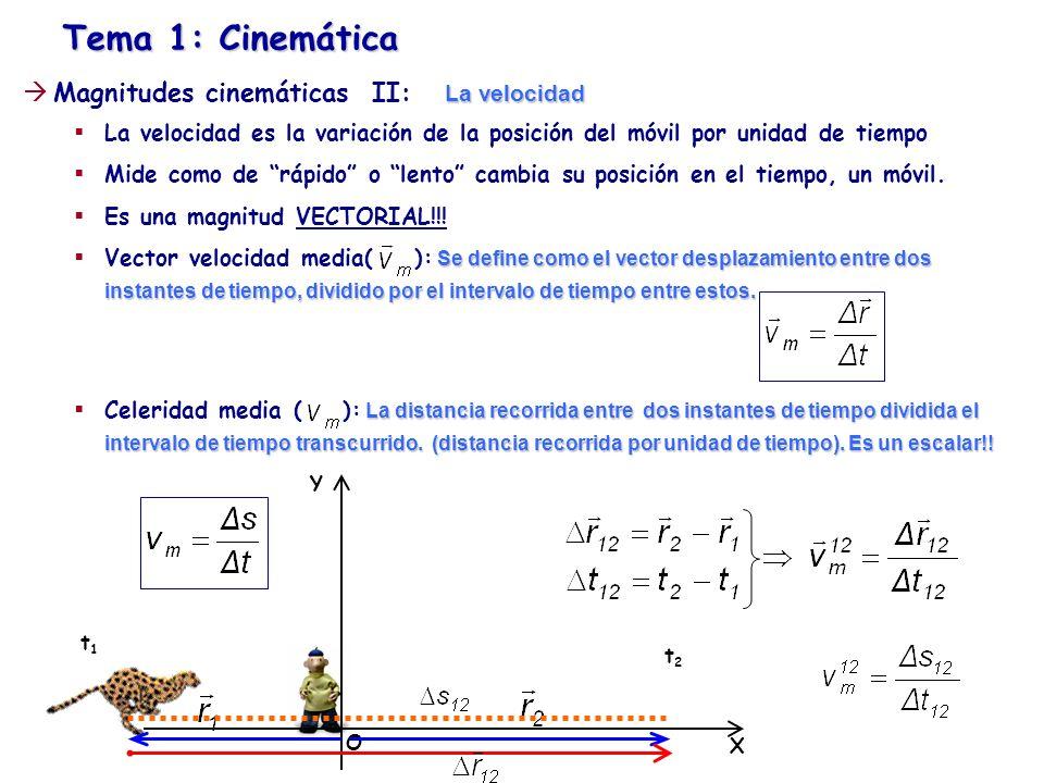 Tema 1: Cinemática Y X O t1t1 t2t2 La velocidad Magnitudes cinemáticas II: La velocidad Vector velocidad media( ): Celeridad media ( ): No siempre coinciden y (sólo coinciden cuando la trayectoria es rectilínea o movimientos en 1D)
