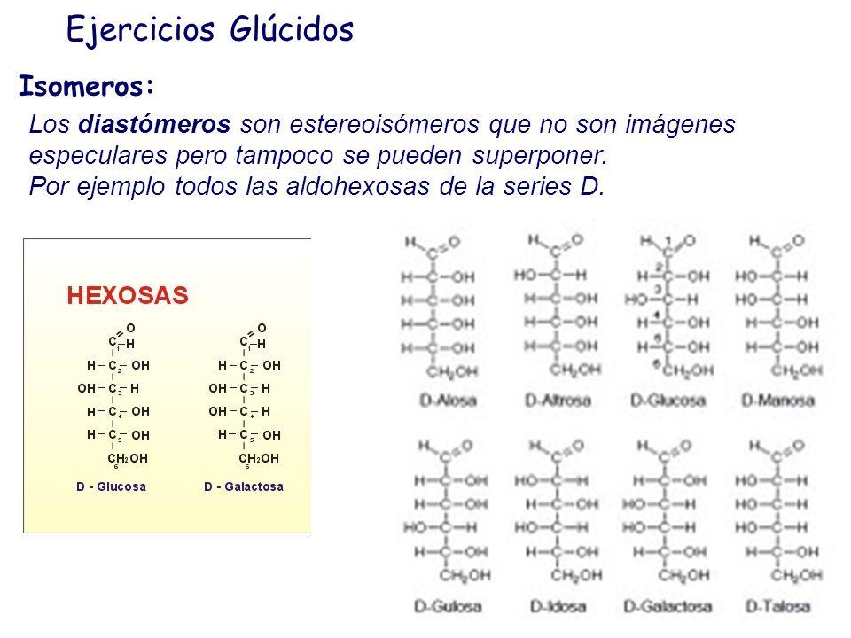 Ejercicios Glúcidos Isomeros: Los estereoisómeros (Isómeros ópticos) son isómeros cuyas moléculas se diferencian por la disposición de sus átomos o gr