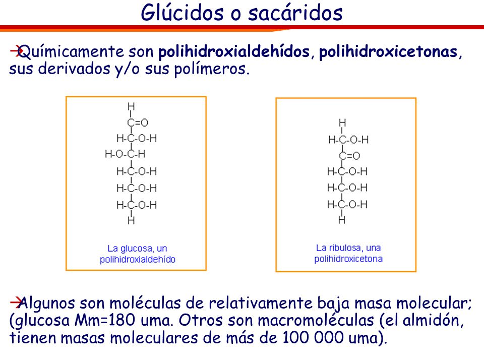 Los glúcidos son compuestos orgánicos constituidos por carbono, hidrógeno y oxígeno (en algunos casos pueden tener además otros elementos químicos com