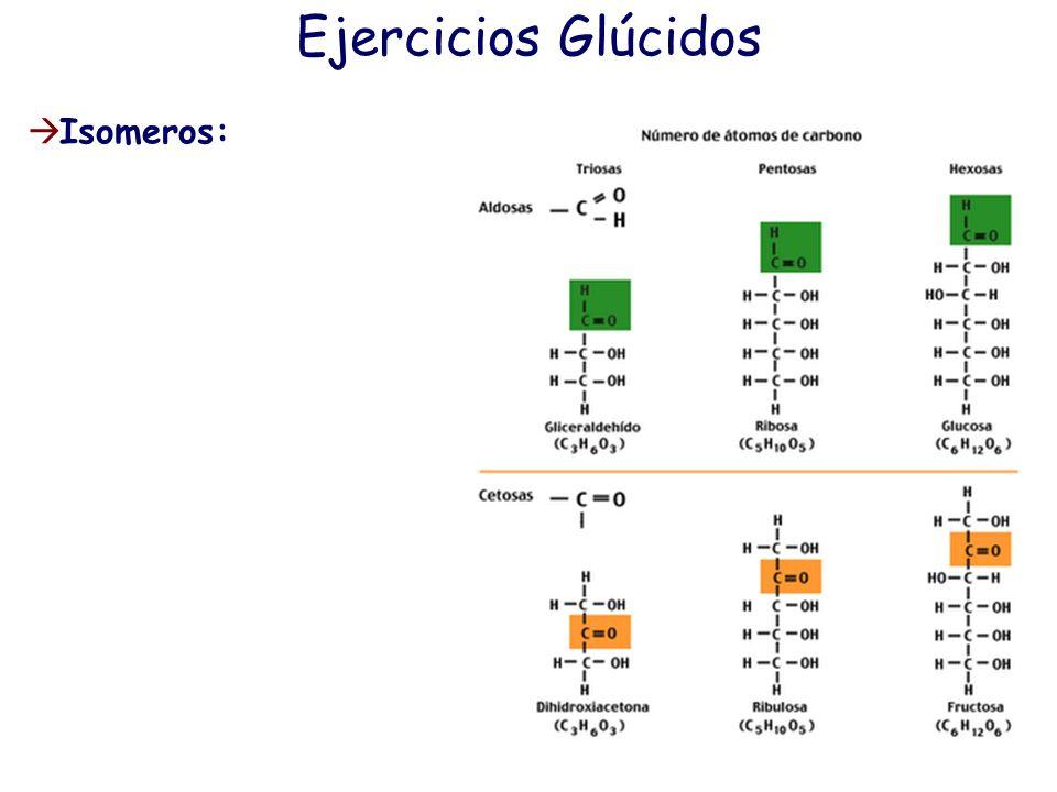 Ejercicios Glúcidos Dada la siguiente molécula: (un monosacárido ciclado) a) nómbrala b) escribe su estructura de Fischer c) dí que tipo de isomería p