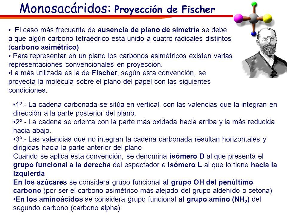 Monosacáridos: Isomería óptica Los monosacáridos presentan isomería óptica ya que tienen carbonos asimétricos o quirales (cuatro radicales diferentes)