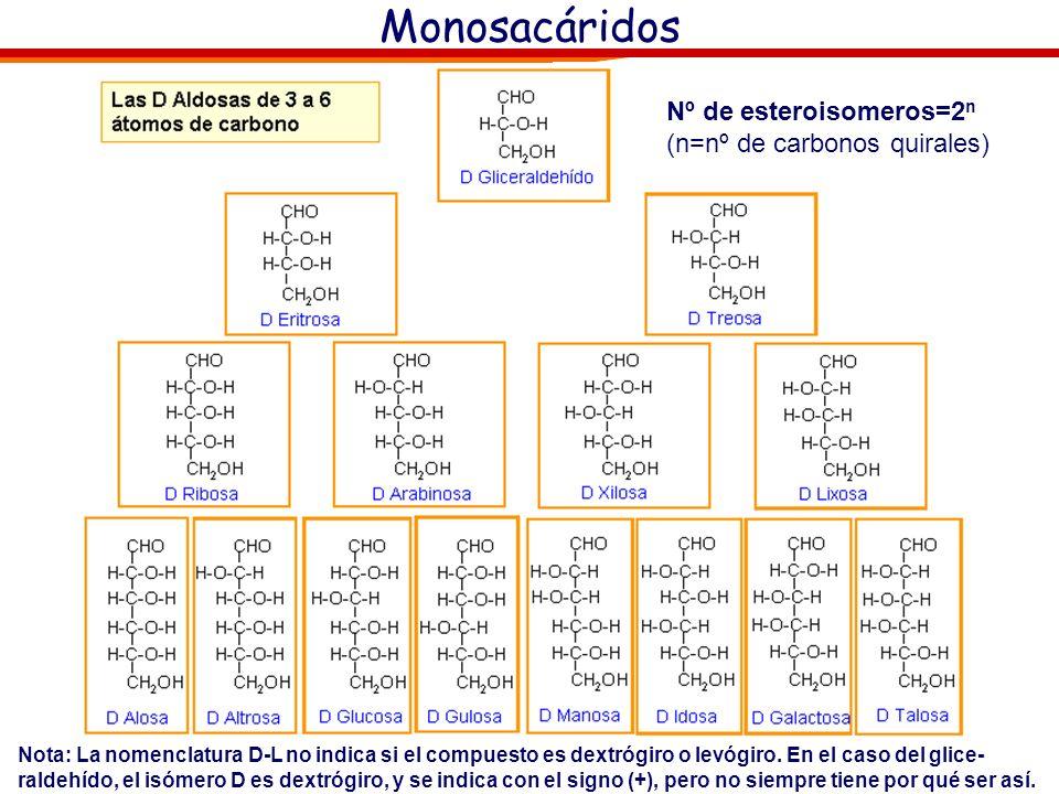Monosacáridos: Proyección de Fisher La nomenclatura D-L es inequívoca para designar la configuración de isómeros con un solo carbono asimétrico. Sin e