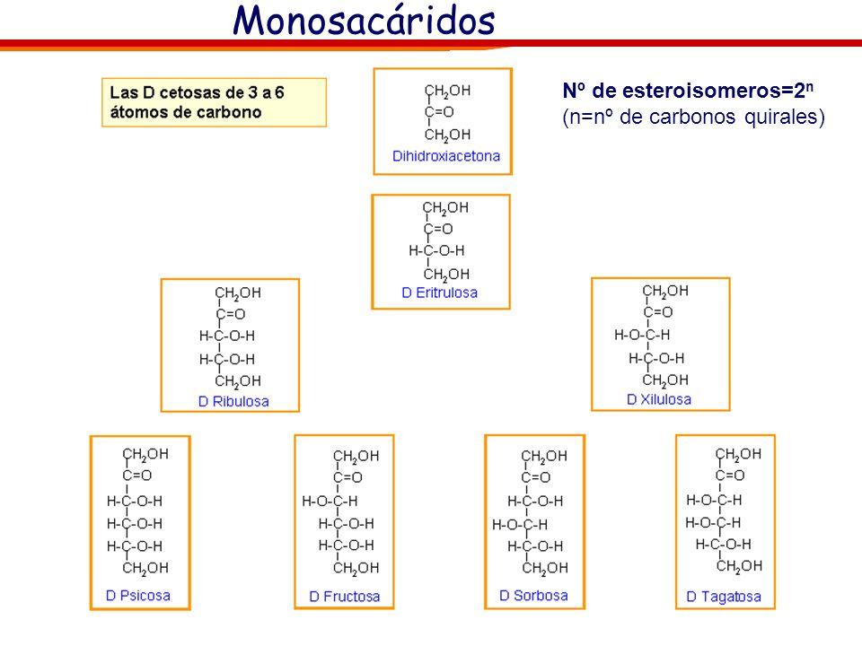 Monosacáridos Nº de esteroisomeros=2 n (n=nº de carbonos quirales) Nota: La nomenclatura D-L no indica si el compuesto es dextrógiro o levógiro. En el