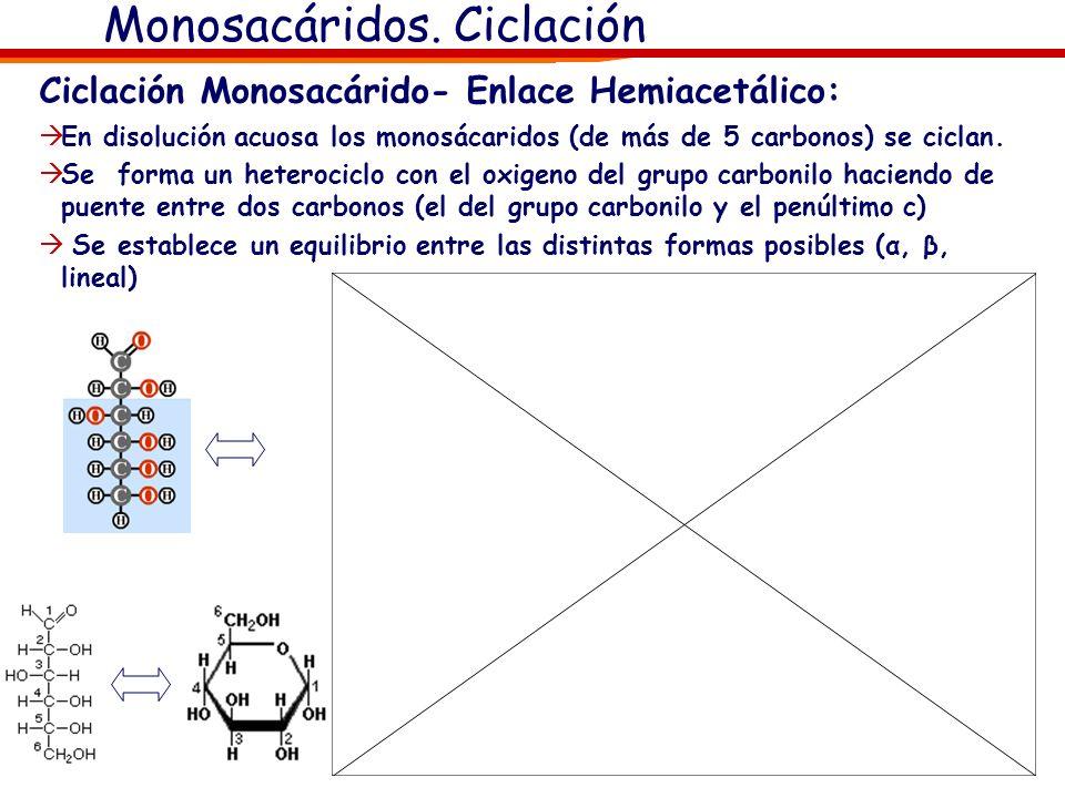 Monosacáridos. Diastoisomería Isomería Óptica: Actividad óptica