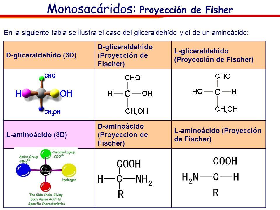 Monosacáridos: Proyección de Fischer El caso más frecuente de ausencia de plano de simetría se debe a que algún carbono tetraédrico está unido a cuatr