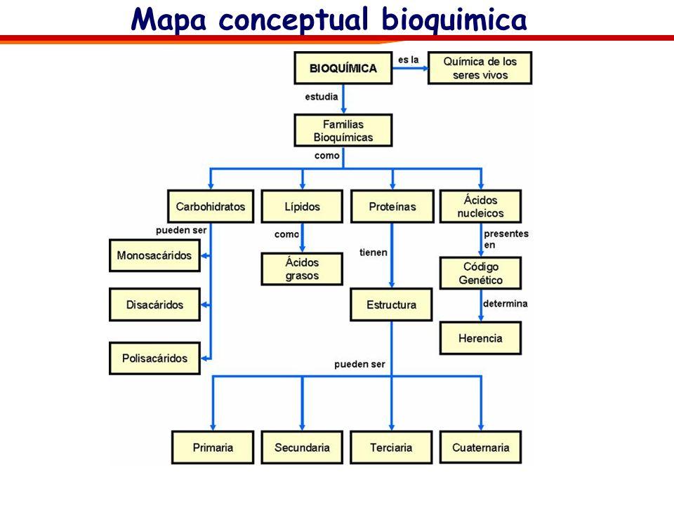 Mapa conceptual bioquimica