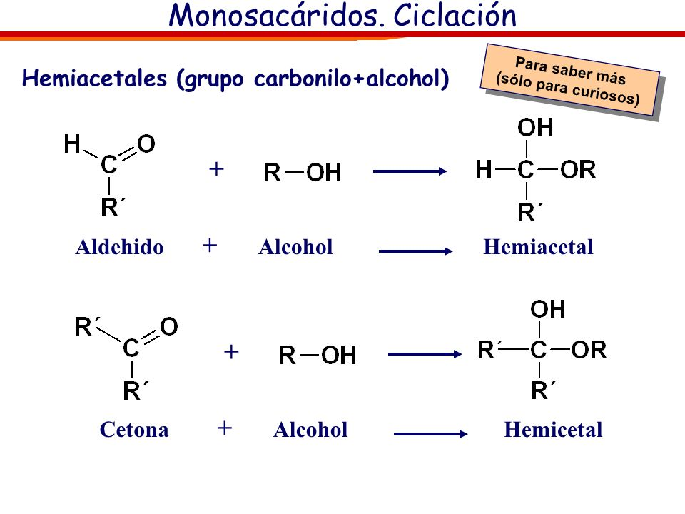 Monosacáridos. Ciclación Ciclación Monosacárido- Mutarrotación y enlace hemiacetálico: En disolución acuosa los monosácaridos (de más de 5 carbonos) s