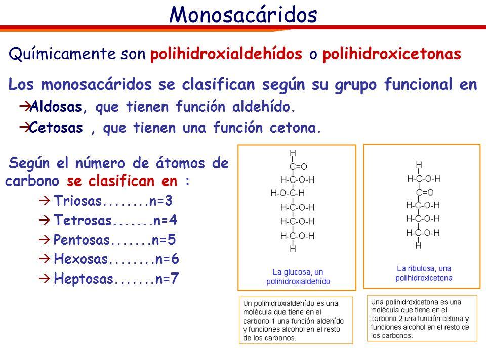 Químicamente son polihidroxialdehídos o polihidroxicetonas Los monosacáridos se clasifican según su grupo funcional en Aldosas, que tienen función aldehído.