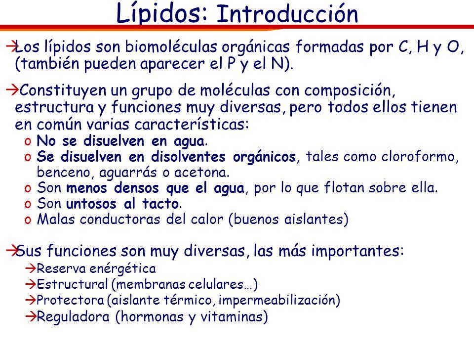 Los lípidos son biomoléculas orgánicas formadas por C, H y O, (también pueden aparecer el P y el N). Constituyen un grupo de moléculas con composición
