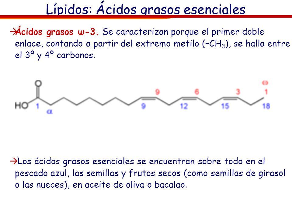 Lípidos: Ácidos grasos esenciales Ácidos grasos ω-3. Se caracterizan porque el primer doble enlace, contando a partir del extremo metilo (–CH 3 ), se