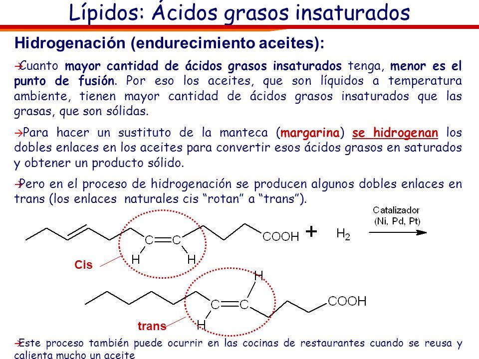 Lípidos: Ácidos grasos insaturados Hidrogenación (endurecimiento aceites): Cuanto mayor cantidad de ácidos grasos insaturados tenga, menor es el punto
