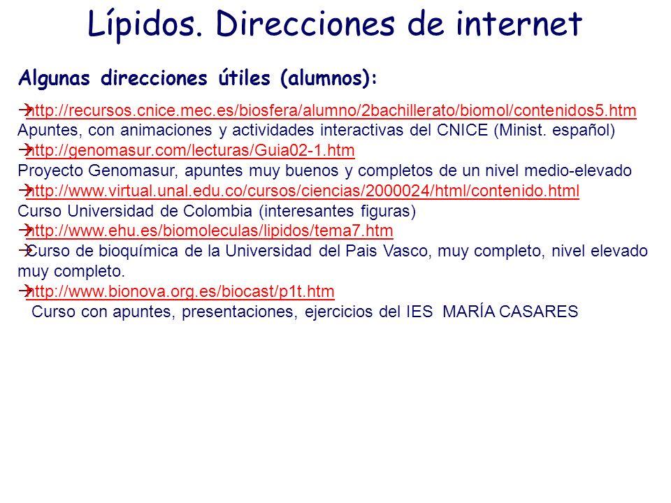 Lípidos. Direcciones de internet Algunas direcciones útiles (alumnos): http://recursos.cnice.mec.es/biosfera/alumno/2bachillerato/biomol/contenidos5.h