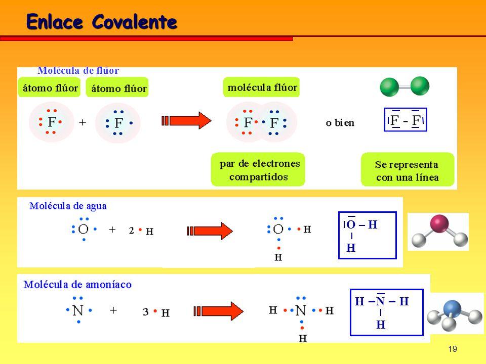 19 Enlace Covalente Molécula de flúor O – H H H – N – H H