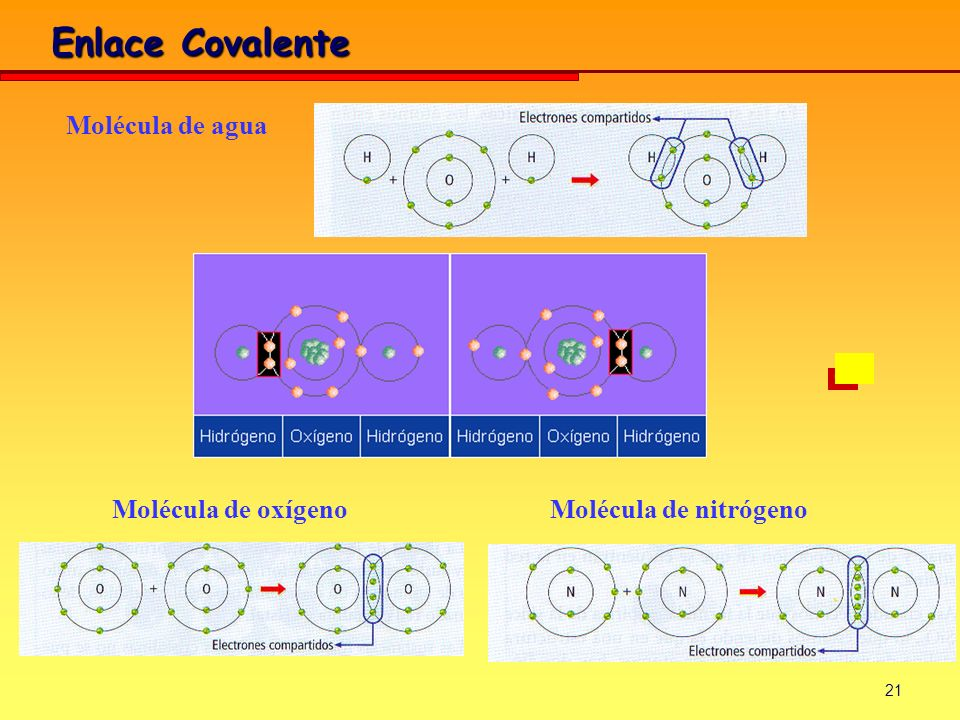 21 Enlace Covalente Molécula de agua Molécula de oxígenoMolécula de nitrógeno