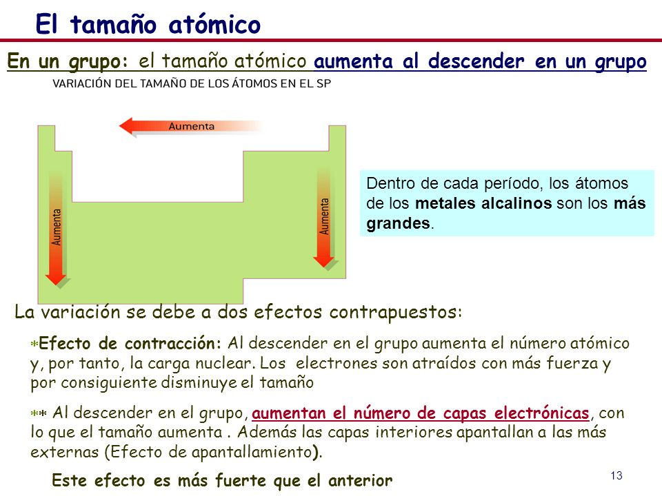 13 En un grupo: el tamaño atómico aumenta al descender en un grupo Dentro de cada período, los átomos de los metales alcalinos son los más grandes. El