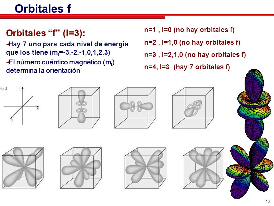 43 Orbitales f Orbitales f (l=3): Hay 7 uno para cada nivel de energía que los tiene (m l =-3,-2,-1,0,1,2,3) El número cuántico magnético (m l ) determina la orientación n=1, l=0 (no hay orbitales f) n=2, l=1,0 (no hay orbitales f) n=3, l=2,1,0 (no hay orbitales f) n=4, l=3 (hay 7 orbitales f)