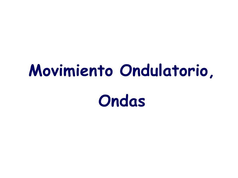 2 Ondas: Introducción I Las ondas están relacionadas con muchísimos fenómenos cotidianos y no tan cotidianos.