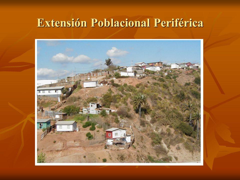 Degradación del Paisaje natural (Hacienda Siete Hermanas. Mayo de 2005 )