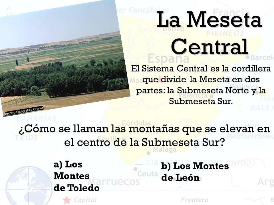 La Meseta Central El Sistema Central es la cordillera que divide la Meseta en dos partes: la Submeseta Norte y la Submeseta Sur. a) Los Montes de Tole
