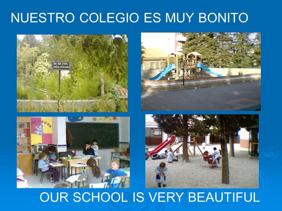 OUR SCHOOL IS VERY BEAUTIFUL NUESTRO COLEGIO ES MUY BONITO
