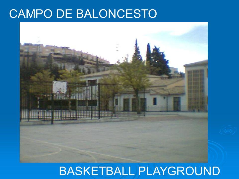 BASKETBALL PLAYGROUND CAMPO DE BALONCESTO
