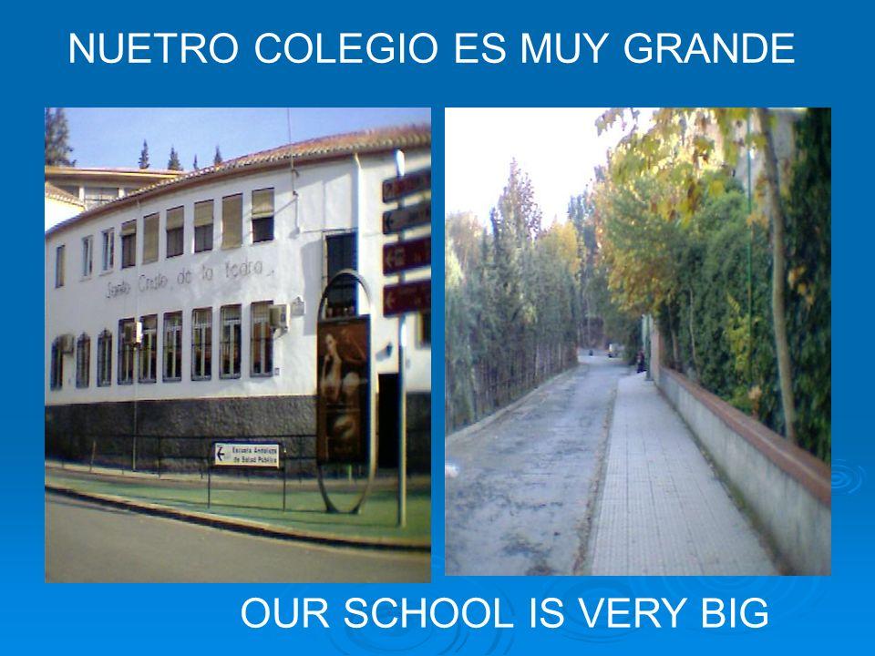 NUETRO COLEGIO ES MUY GRANDE OUR SCHOOL IS VERY BIG