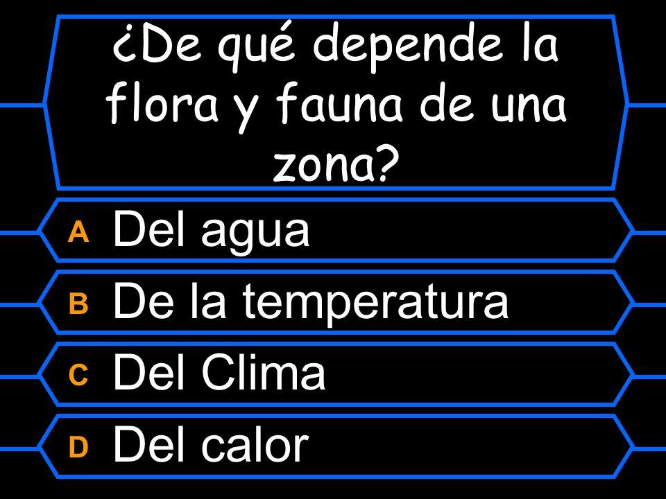 Pregunta 12