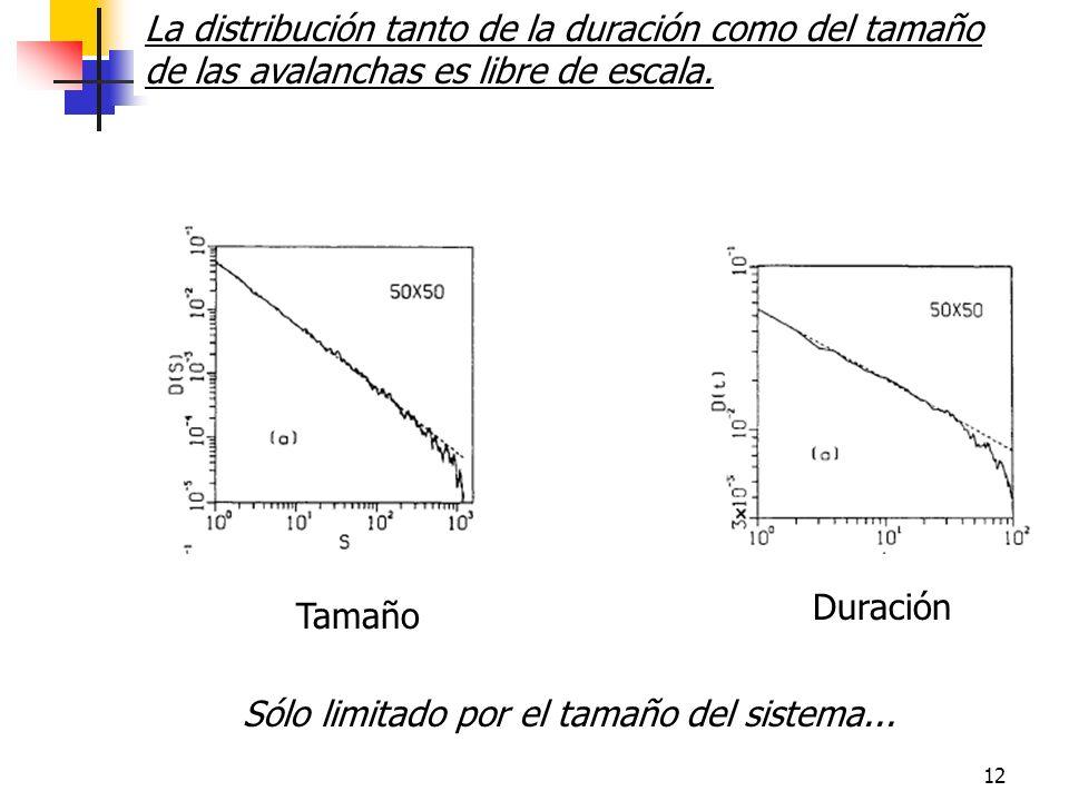 12 Tamaño Duración La distribución tanto de la duración como del tamaño de las avalanchas es libre de escala.
