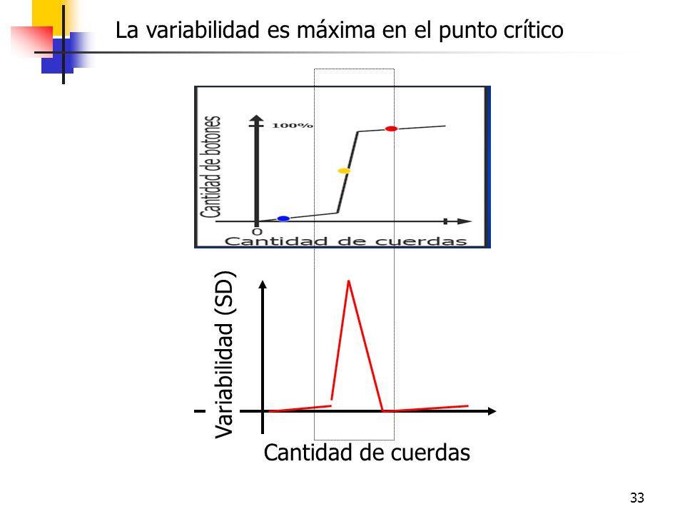 33 Cantidad de cuerdas Variabilidad (SD) La variabilidad es máxima en el punto crítico