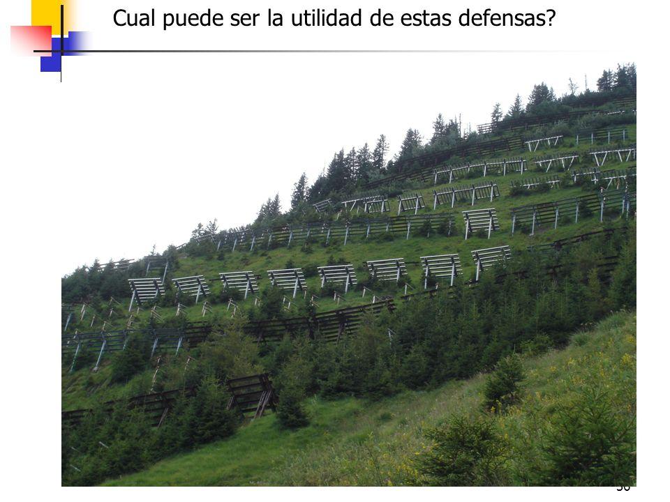 36 Cual puede ser la utilidad de estas defensas?