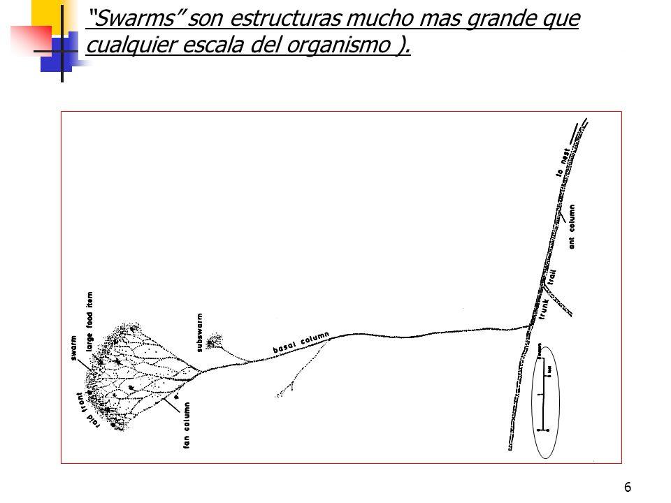 6 Swarms son estructuras mucho mas grande que cualquier escala del organismo ).