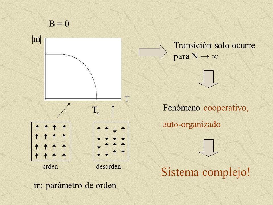 B = 0 |m| TcTc T Transición solo ocurre para N Fenómeno cooperativo, auto-organizado Sistema complejo! m: parámetro de orden ordendesorden