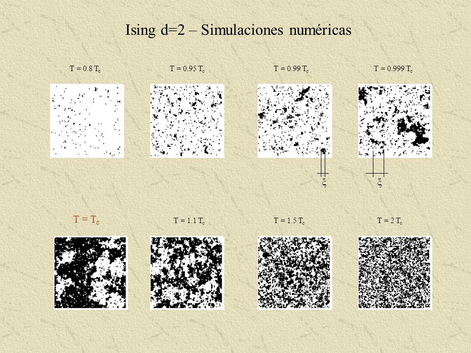 Ising d=2 – Simulaciones numéricas T = 0.8 T c T = 0.95 T c T = 0.99 T c T = 0.999 T c T = T c T = 1.1 T c T = 1.5 T c T = 2 T c ξξ