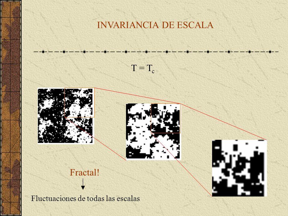 T = T c INVARIANCIA DE ESCALA Fractal! Fluctuaciones de todas las escalas