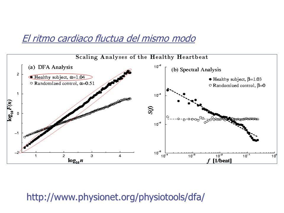 El ritmo cardiaco fluctua del mismo modo http://www.physionet.org/physiotools/dfa/