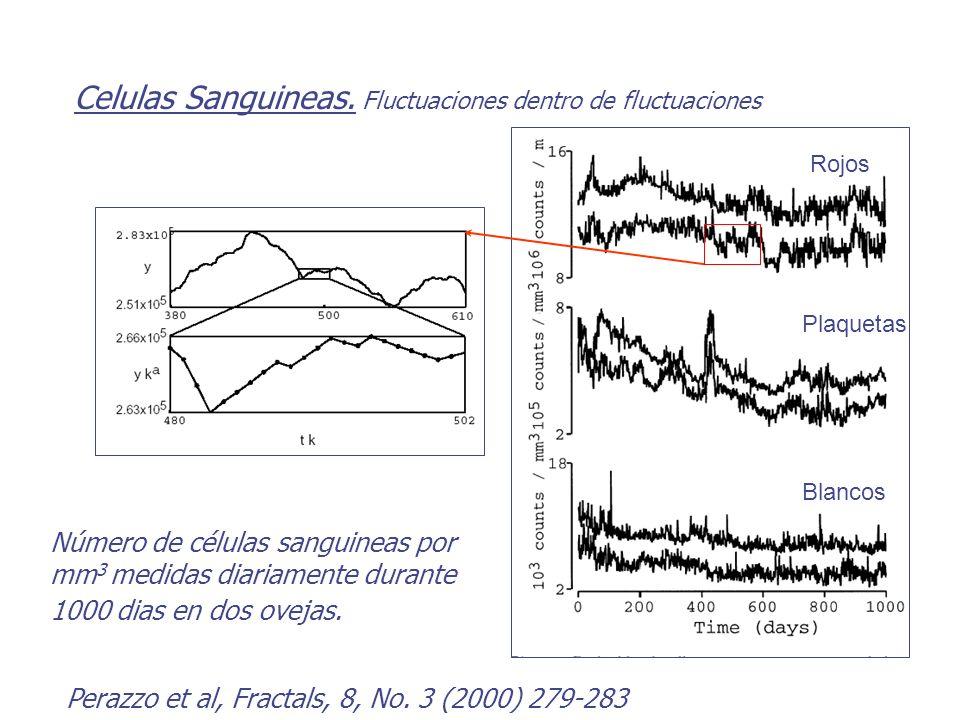 Celulas Sanguineas. Fluctuaciones dentro de fluctuaciones Número de células sanguineas por mm 3 medidas diariamente durante 1000 dias en dos ovejas. P