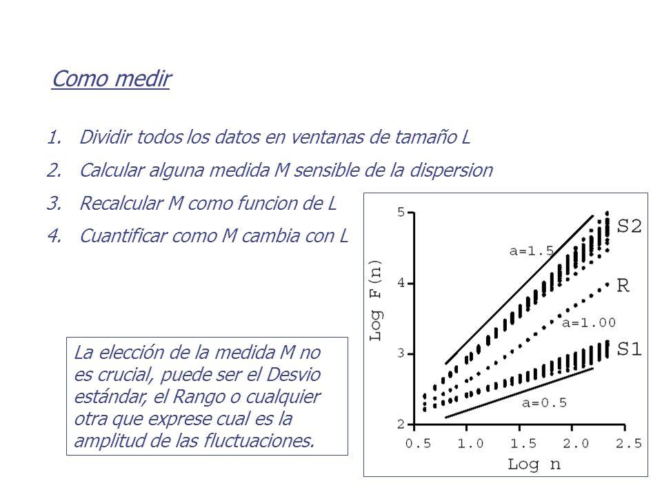 Como medir 1. 1.Dividir todos los datos en ventanas de tamaño L 2. 2.Calcular alguna medida M sensible de la dispersion 3. 3.Recalcular M como funcion