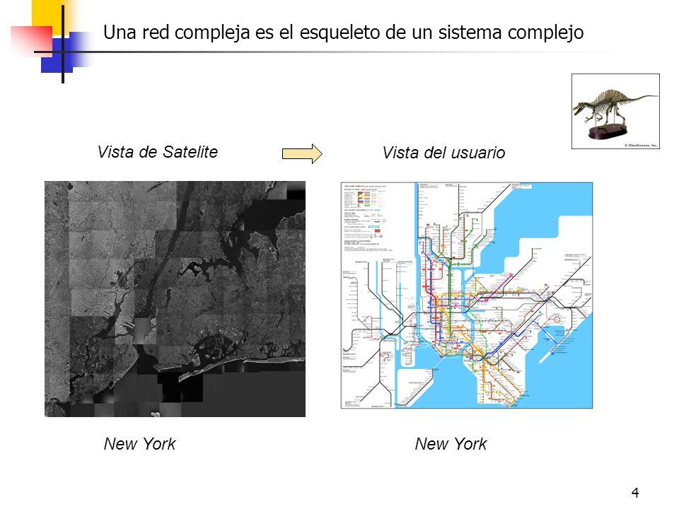 4 Una red compleja es el esqueleto de un sistema complejo Vista de Satelite Vista del usuario New York