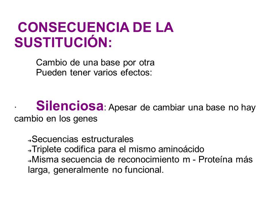 CONSECUENCIA DE LA SUSTITUCIÓN: Cambio de una base por otra Pueden tener varios efectos: · Silenciosa : Apesar de cambiar una base no hay cambio en lo