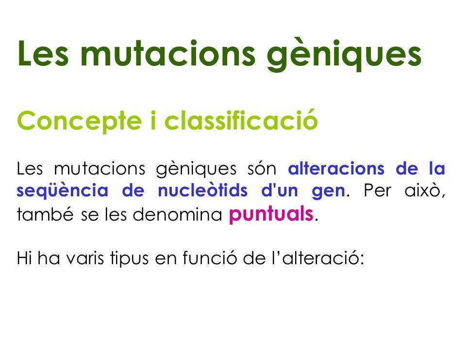 Les mutacions gèniques Concepte i classificació Les mutacions gèniques són alteracions de la seqüència de nucleòtids d'un gen. Per això, també se les