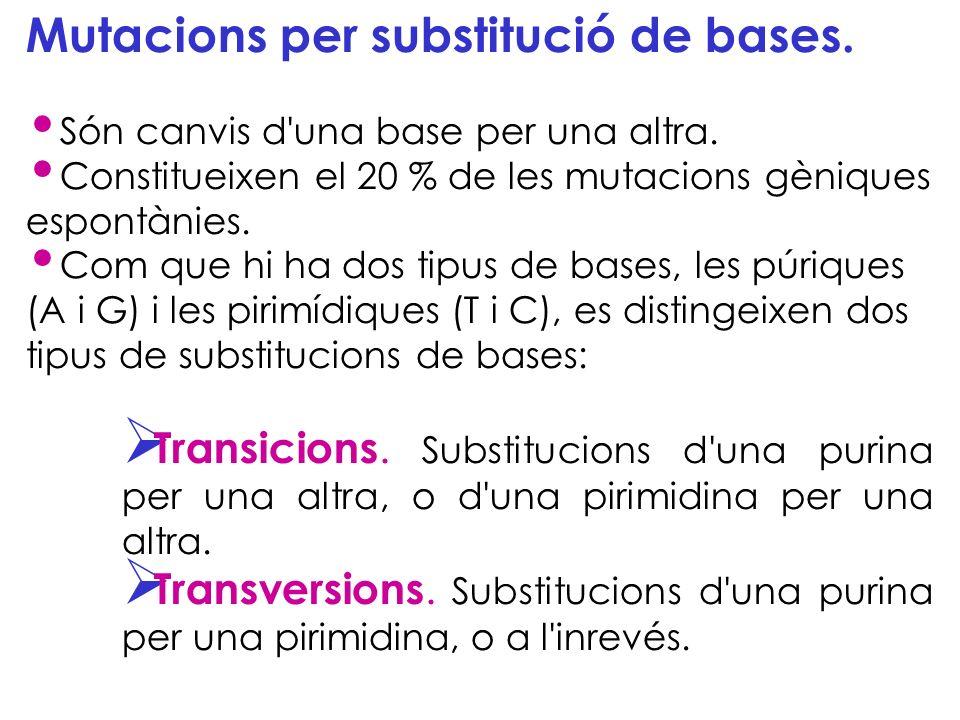 Mutacions per substitució de bases. Són canvis d'una base per una altra. Constitueixen el 20 % de les mutacions gèniques espontànies. Com que hi ha do
