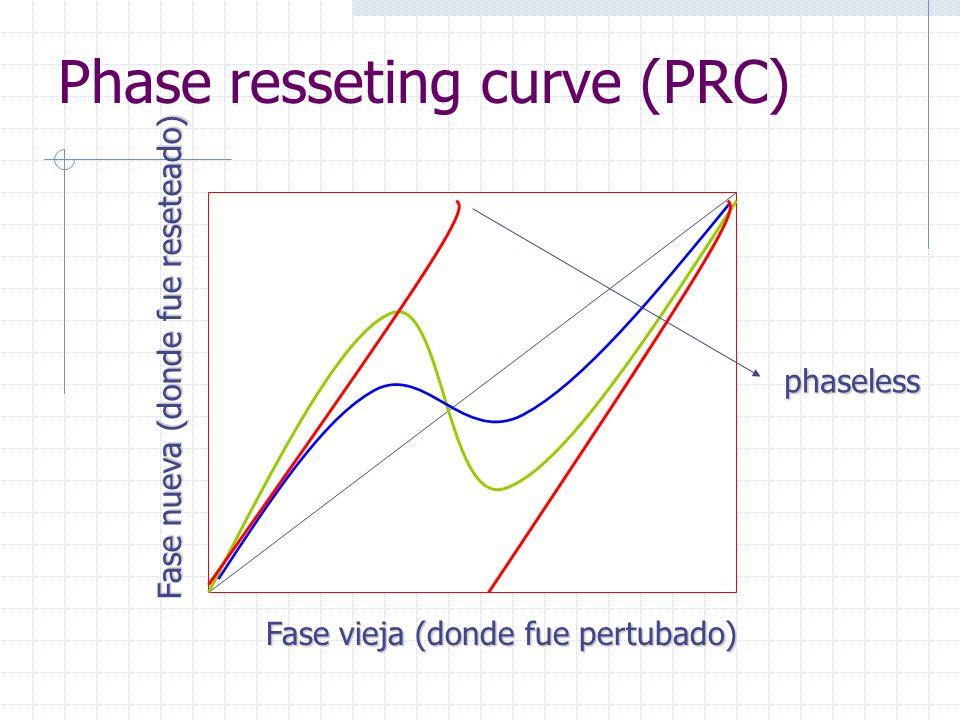 Fase vieja (donde fue pertubado) Fase nueva (donde fue reseteado) Phase resseting curve (PRC)phaseless