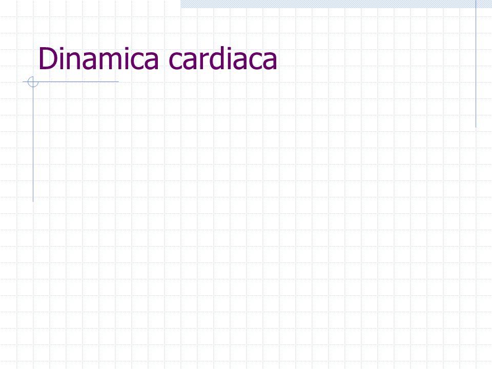 Dinamica cardiaca